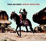 African revolution | Tiken Jah Fakoly