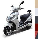 Elektroroller E-Scooter Elektro Roller E-Roller mit Straßenzulassung 45 km/h 60 Kilometer Reichweite, Weiß