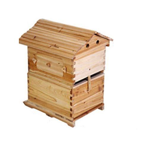 Bee Hive Kit Wood Beehive für Imker Keeping Boxen Supplies Equipment Tool Honey Box House für Anfänger Anfänger Durable und sauber ohne Verschmutzung - Tool House Kit