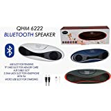 QUANTUM QHM 6222 Bluetooth USB Speaker (White)
