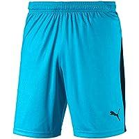 Puma Liga Shorts Hose Homme