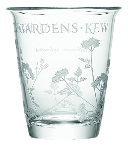 LSA International Cow Parsley RGB Kew Vase, Clear, 16 cm High