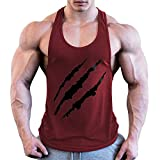 Swallowuk Herren Männer Muscle Gym Stringer Tank Top Bodybuilding Stringer Sportliches Training Fitness Blutdruck T-Shirts Weste (XL, F)