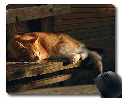 Yanteng Estera del ratón, cojín de ratón Animal del Gato el Dormir del Animal doméstico, Estera del ratón para la computadora cat176
