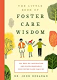 Daily Inspirations for Foster Care Families