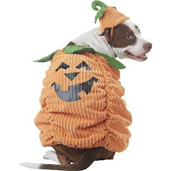 petco-boo-tique-halloween-ribbed-pumpkin-dog-costume-size-medium-by-petco