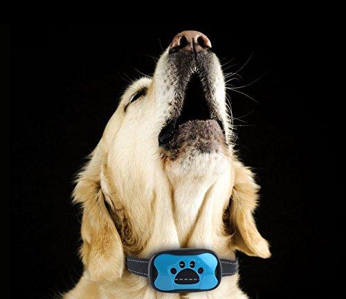 ISOTRONIC Anti-Bell Hundehalsband Erziehungshalsband mit Ton- & Vibrationsfunktion Trainingshalsband ohne Stromschlag (Hund Stromschlag)