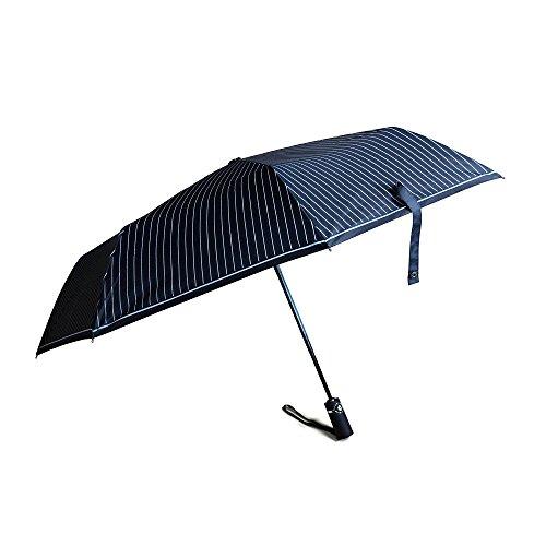 Inson Auto öffnen und Schließen Kompakte Tragbare Regenschirm Schwarz/Cyan -
