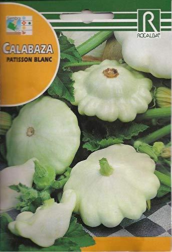 Portal Cool Samen Paket: Kürbis Kürbis Patisson In über Semilas Blanc
