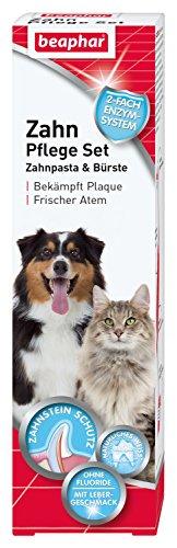 Zahnpflege Set | Zahnpasta & Zahnbürste | Für große und kleine Hunde | Für Katzen | Ohne Fluoride | Mit Lebergeschmack | 1 Bürste & 1 Zahnpasta