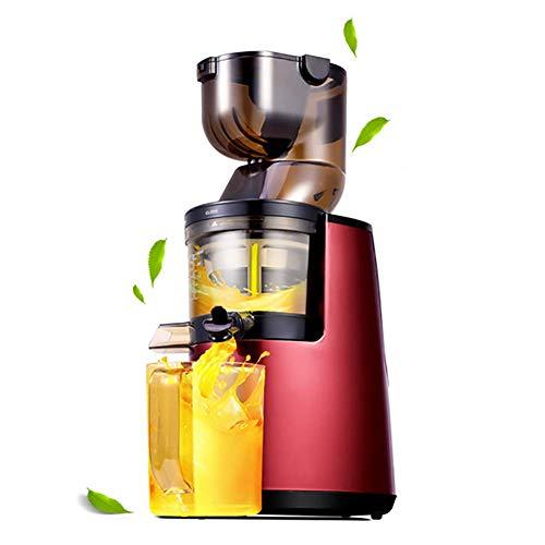 Lndixy Juicer-Extraktor, Juicers Vollfrucht und Gemüse mit Dual-Stage Quiet Motor & Reverse Funktion, Cold Press Juicer schafft frischen, gesunden Gemüse und Fruchtsaft