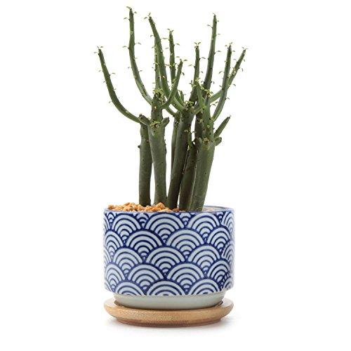 t4u-stile-giapponese-seriale-no3-ceramica-vaso-di-fiori-pianta-succulente-cactus-vaso-di-fiori-conte