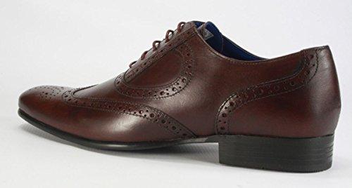 Red Tape en cuir véritable Bout pointu Chaussures richelieu à lacets pour homme Noir/marron clair Bordeaux
