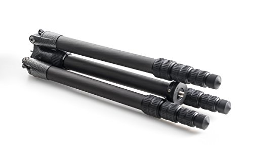 Gitzo GT2542T Traveler Serie 2 Carbon 6X Stativ (Seg. 4, G-Lock, Mittelsäule kurz) -