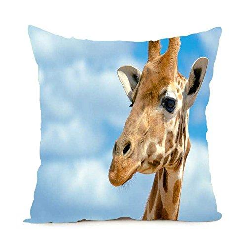 Kissen Retail-paket (Alexander Giraffe Schöne Stil Kissen, weich, quadratisch Reißverschluss Überwurf Kissenbezüge Custom Kissen Sham Retail Paket, 18x18inch)