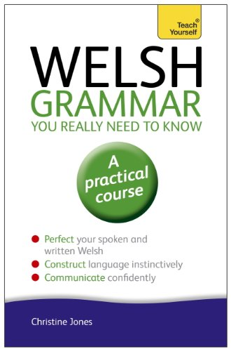 Welsh Grammar You Really Need to Know: Teach Yourself (Teach Yourself Language Reference) (English Edition)