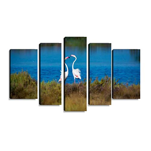 Wildvgel gro rosa Flamingo im Nationalpark, Provence, Frankreich Wandbilder abstrakt leinwandbild Digitalkunstdruck leinwanddrucke Eigenes Design Gemälde Wanddekoration mit Holzrahmen 5-teilig