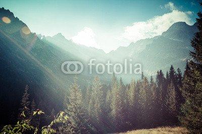 alu-dibond-bild-140-x-90-cm-view-of-tatra-mountains-from-hiking-trail-poland-europe-bild-auf-alu-dib