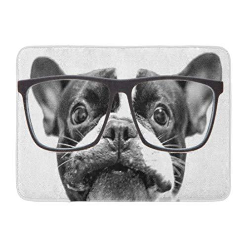 Kinhevao Bad Matte Hund französische Bulldogge mit Brille Haustier niedlichen Welpen Badezimmer Dekor Teppich - Gras-teppich Badezimmer