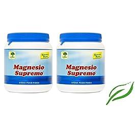 NATURAL POINT – MAGNESIO SUPREMO 2 CONFEZIONI DA 300 GR antistress naturale, stanchezza cronica, mal di testa, sistema…