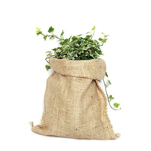 Saco Yute 100% Natural - Pack 3 Bolsas Ecológicas