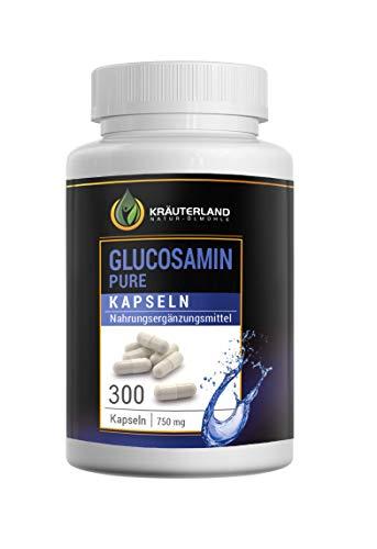 Glucosamin Kapseln • ab 8,90 • 300 Kapseln à 750mg • reines Glucosamin • hochdosiert • in wiederverschließbaren Frische-Dosen • sofortiger Versand (300 Kapseln)