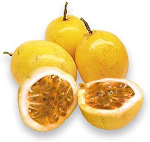 Pinkdose Fruchtsamen: Passionsfruchtsamen Schnelle Fruchtpflanzensamen Fruchtsamen Gemüsegarten-Pack-Seed