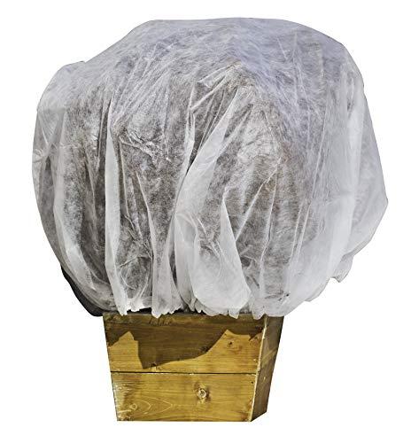 Windhager giardino-tessuto non tessuto invernale cappotto xxl, 2x 2,4m, 20g/m², bianco