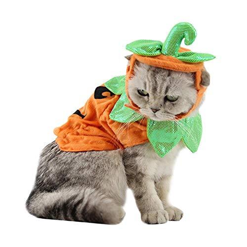 Ueb costume zucca gatto di halloween vestito da cane e gatto domestico con cappello regolabile per cucciolo teddy gatto abbigliamento per decorazioni per animali domestici