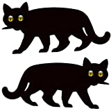 Medipaq 2X Garden Scare Cat with Reflective Marble Eyes - Cat Deterrent (Double Pack)