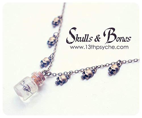iny Glas Flasche Halskette. Halloween Halskette, Glas Vial Halskette, Nette Flasche Halskette, Schädel Flasche Halskette, Gift Anhänger. ()