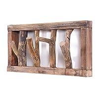 DESIGN DELIGHTS RUSTIC COAT RACK LIMB | 45x23x~10-13 cm (WxHxD), drift wood | wall wardrobe