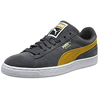 Puma Unisex-Erwachsene Suede Classic Sneaker, Grau (Iron Gate-Buckthorn Brown White 32), 43 EU