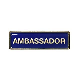 Ambassador Rectangle Polydome Budget Badge (Gold Finish) (Blue)