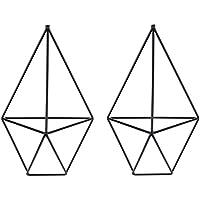 2 soportes de pared para plantas, con diseño geométrico de triángulo, para plantas Tillandsia