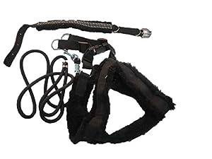 PETHUB Combo FAR Harness-Black-Large Dog