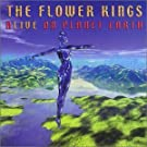 Alive On Planet Earth: Live 1999 by The Flower Kings (2000-02-15)