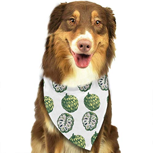 Tropical Fruits Pet Bandana Triangle Dog Cat Neckerchief Bibs Scarfs Accessories for Pet Cats and Baby Puppies ()