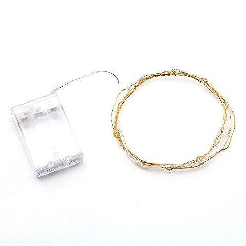 LED barre lumineuse - TOOGOO(R)la chaine des LEDs alimentee par piles Fil de cuivre Lumieres LEDs dans la chambre pour jardin Chemin patio Noel Decoration d'Arbre(20 LEDs, blanc chaud,