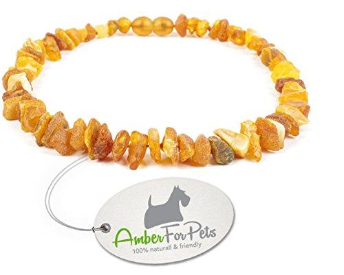 Bernstein Halsband für Hunde und Katzen - von 20cm bis 68cm -Bernsteinkette - Zeckenhalsband - Zeckenschutz 22cm