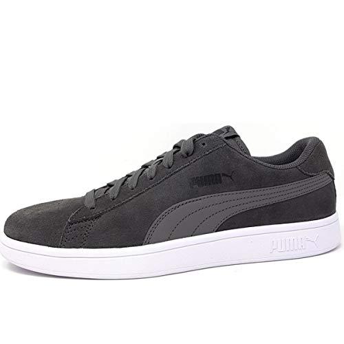 Top Fashion Sneaker (Puma Puma Smash v2, Unisex-Erwachsene Sneakers, Grau (Castlerock-Puma Black-Puma White 32), 41 EU)