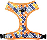 Heads Up For Tails Chaser Reversible Dog Harness (Mesh Colour, Medium)