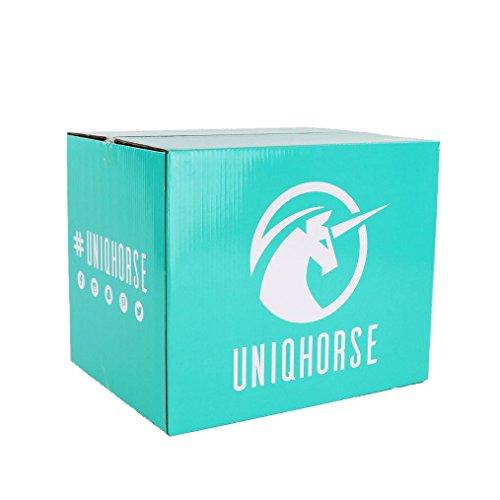 UNIQHORSE Putzbox Curve Black Pearl - Für Reiter Entwickelt - 4