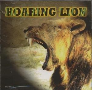 Roaring Lion - Roaring Lion by Roaring Lion