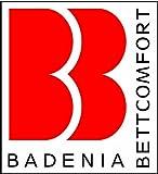 Badenia 03649730149 Bettcomfort Steppbett, 4-Jahreszeiten, Micro Thermo, 155 x 220 cm, weiß -