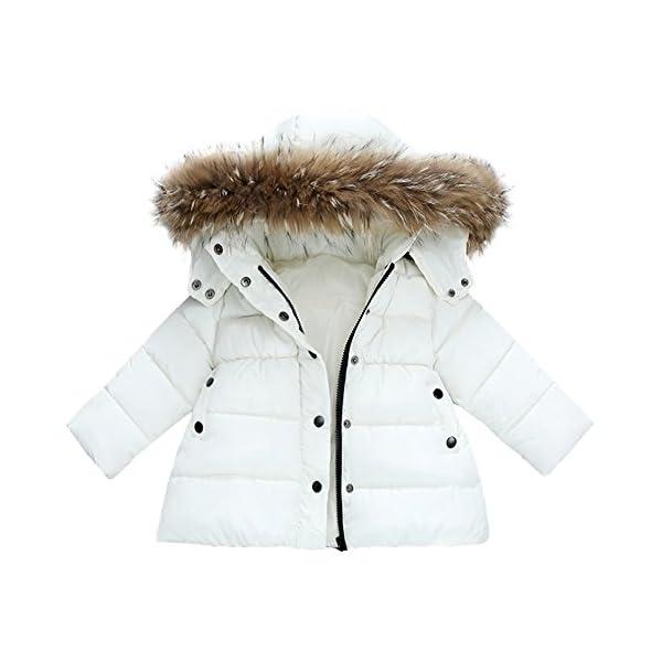 Mitlfuny Invierno Plumífero Acolchado Chaqueta Niñas Niños Bebé Algodón Abrigo con Capucha Cálido Manga Larga Color… 1