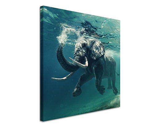 Fine-art-wasser (Leinwandbilder quadratisch 60x60cm Tierbilder - Schwimmender Elefant unter Wasser)