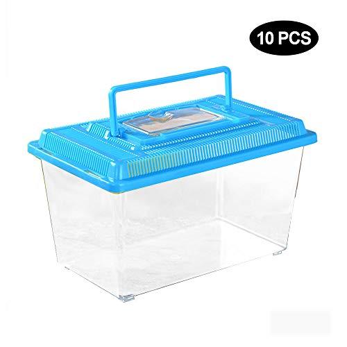 AZXAZ 10 contenitori plastica per rettili Trasparenti con Manico per Il Trasporto impilabili per terrari Insetti rettili Piccoli Pesci Acquatici