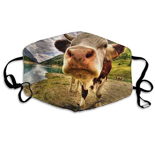 Masken, Masken für Erwachsene, Face Mask Reusable, Warm Windproof Mouth Mask, Mountains Cow Reusable Anti Dust Face Mouth Cover Mask Protective Breath Healthy ()