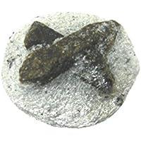 Rohstein Staurolith 2-2,5 cm preisvergleich bei billige-tabletten.eu